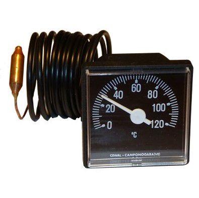 Termomeeter kapiliarinis 0-120C